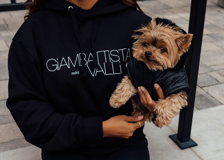 Giambattista Valli H&M sweatshirt