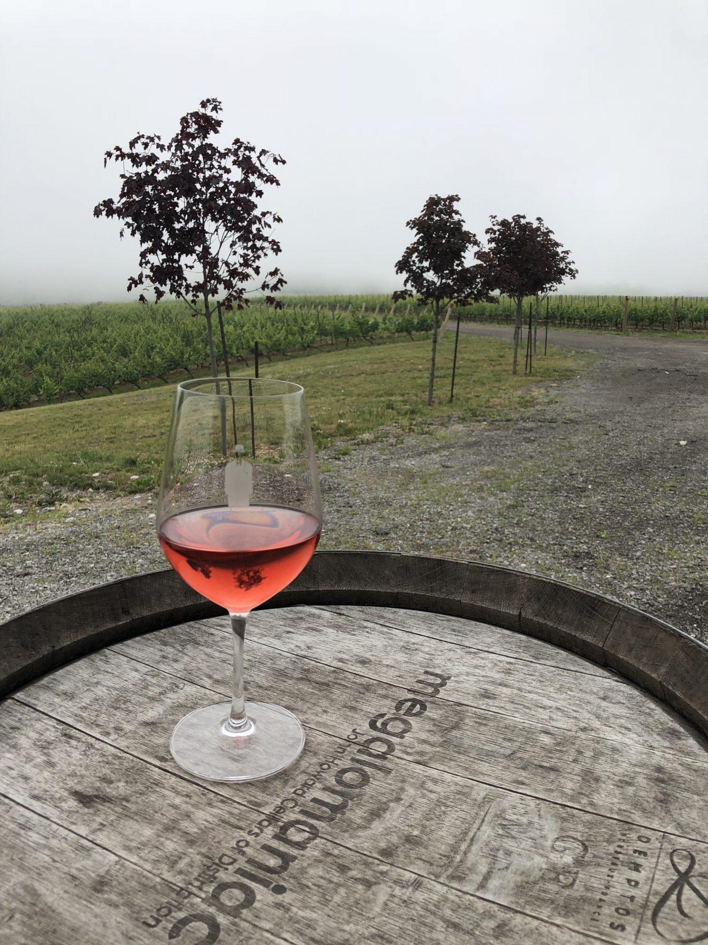 megalomanic winery