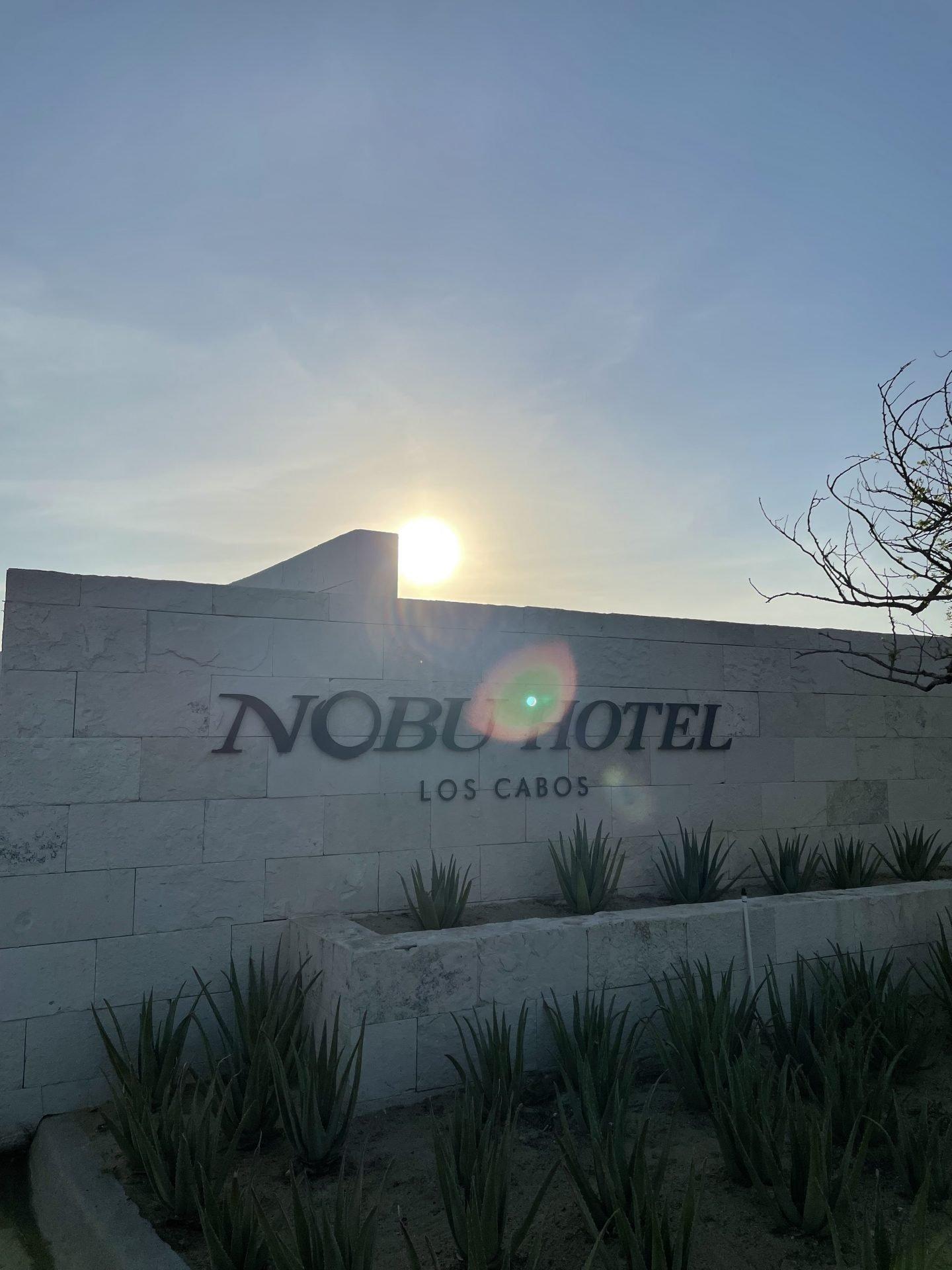nobu los cabos hotel entrance